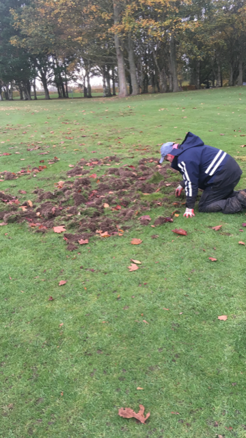 Sam repairing animal damage on 2nd fairway